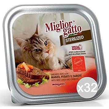 Miglior Gatto Set 32 Mejor Gato Bandeja steriliz. Manzo Gr 100 Comida para Gatos: Amazon.es: Productos para mascotas