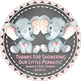 Twin Girls Elephant Baby Shower Favor Stickers, Twins Elephant Baby Shower Favor Tags, Twin Boys Elephant Baby Shower Decorations, Twin Girls Elephant Baby Shower Supplies