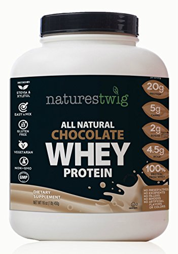 NaturesTwig-All-Natural-Chocolate-Whey-Protein-16-oz
