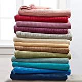 BrylaneHome Studio Primrose Cotton Blanket (Spa,Full/Queen)