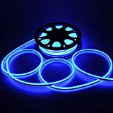 CHIMAERA 50-ft Flexible LED Neon Rope Light in Blue