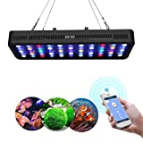 buy Lightimetunnel WiFi LED Aquarium Light, 165W WiFi + Dimmable Fish Tank Ligh Full Spectrum with Four Channels for Freshwater and Saltwater Marine Tanks LPS/SPS now, new 2018-2017 bestseller, review and Photo, best price $145.90
