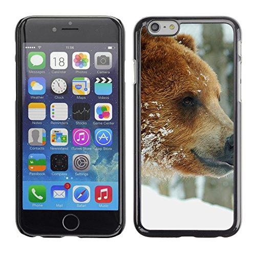 "Premio Sottile Slim Cassa Custodia Case Cover Shell // V00003022 ours bruns Couple // Apple iPhone 6 6S 6G 4.7"""