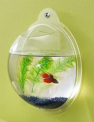 Fish Bubble - Wall Mounted Acrylic Fish Bowl by Fish Bubbles