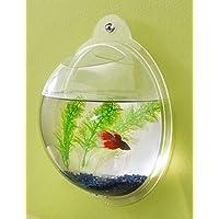 Fish Bubbles - Cuenco de pescado acrílico montado en la pared