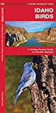 Idaho Birds: A Folding Pocket Guide to Familiar Species (A Pocket Naturalist Guide)
