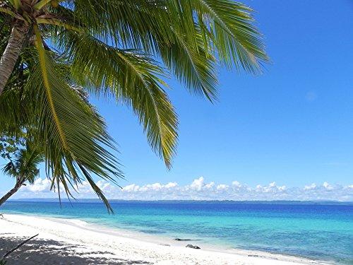 (Home Comforts Laminated Poster Mindanao Island Philippines White Sandy Beach Poster Print 24 x 36)