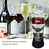Wine Aerator Decanter with Base for Red Wine For
