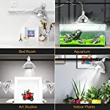 Simple Deluxe Clamp Lamp Light with 8.5 Inch