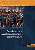 img - for Sozialstruktur, soziale Ungleichheit, sozialer Wandel book / textbook / text book