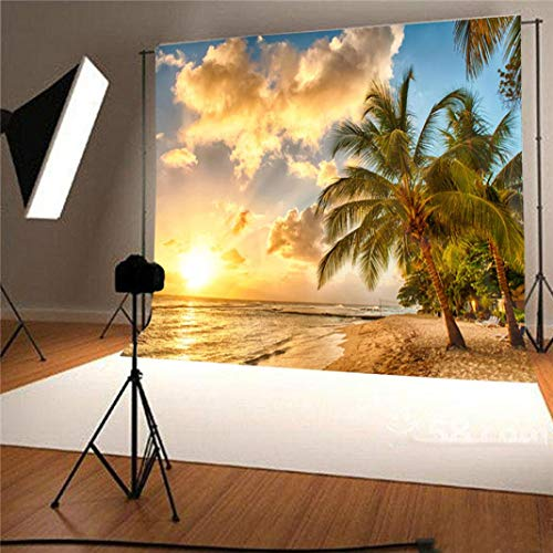 (vmree Indoor Photographic Studio Backdrop, 3D Sunny Beach Themed Photo Shooting Background Props Wall Hanging Screen Post-Production Curtain Folding & Washable Art Cloth 5x3FT.)