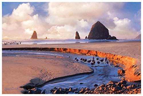 [해외]Haystack Rock Oregon Coast Photo Art Print by Steve Terrill (12 x 18). / Haystack Rock Oregon Coast Photo Art Print by Steve Terrill (12 x 18).
