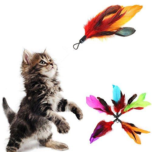 5pcs Pet Cat Feather Teaser Refills For Da Bird Wand (Notepad Refills Post)