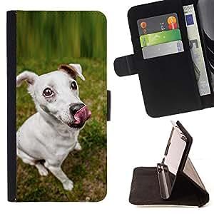 KingStore / Leather Etui en cuir / Samsung Galaxy S5 V SM-G900 / Jack Russell Terrier perro canina