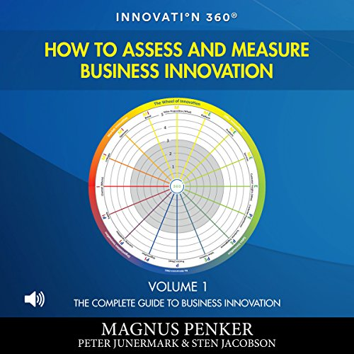 How to Assess and Measure Business Innovation: The Complete Guide to Business Innovation, Book 1