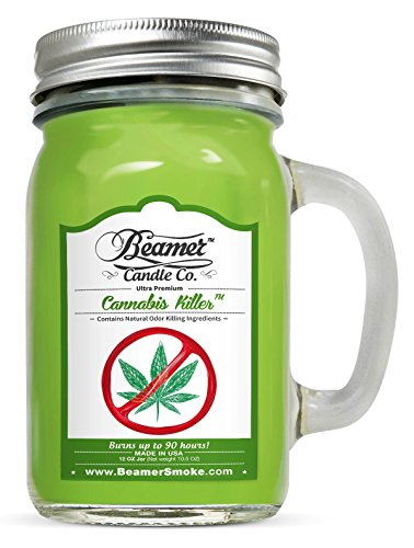 Cannabis Killer 12oz Natural Odor & Smoke Eliminator Scented Candle 90 Hr (Strawberry Paper Baskets compare prices)