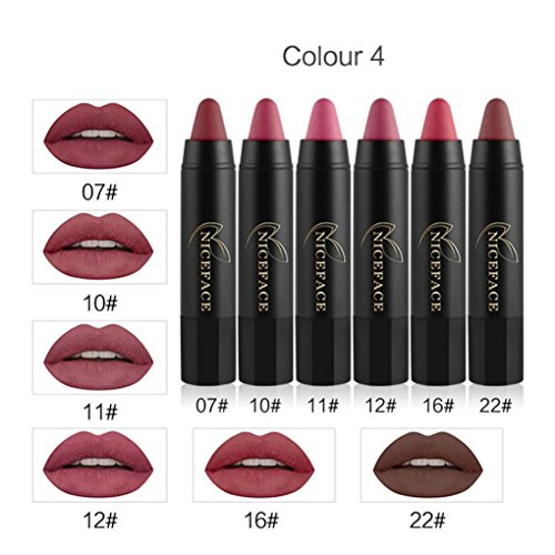Hunzed Women Velvet Matte Color Pencil Lipstick Set Crayon Sexy Lip Gloss Lipstick Cosmetic Makeup Set (D)