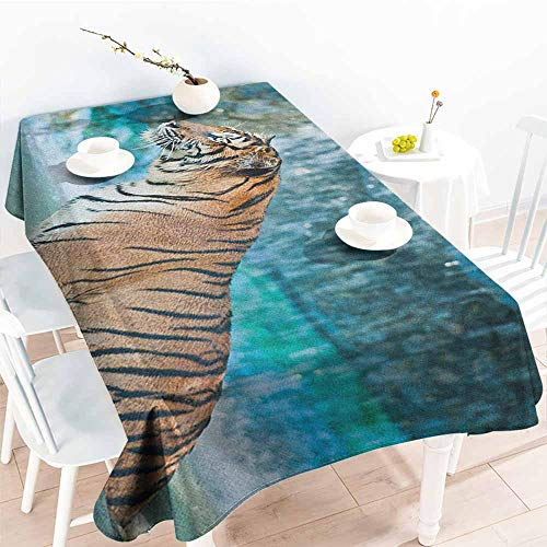 (EwaskyOnline Anti-Fading Tablecloths,Tiger Feline Beast in Pond Searching for Prey Sumatra Indonesia Scenes,Table Cover for Kitchen Dinning Tabletop Decoratio,W60X102L, Turquoise Pale Brown Black)