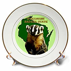 3dRose cp_41201_1 Wisconsin Badger State Porcelain Plate, 8-Inch