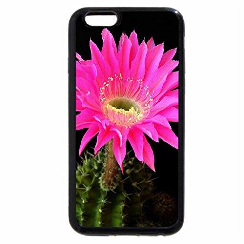 iPhone 6S / iPhone 6 Case (Black) Pink-Cactus_Flower