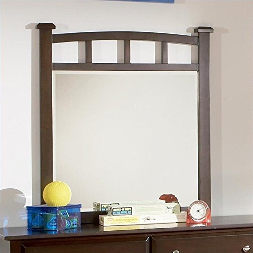 Coaster Home Furnishings 400754 Transitional Mirror, Cappuccino