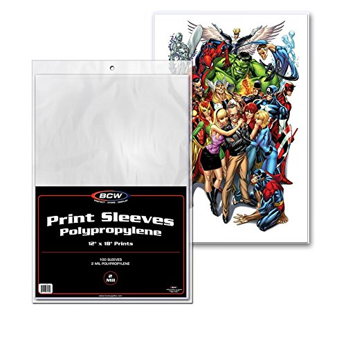 12X18 PHOTOGRAPH PRINT PROTECTOR SLEEVES PACK OF 100 - 12x12 Art
