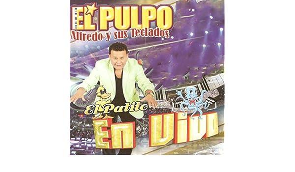 Matando Tabanos (En Vivo) de El Pulpo Alfredo Y Sus Teclados en Amazon Music - Amazon.es