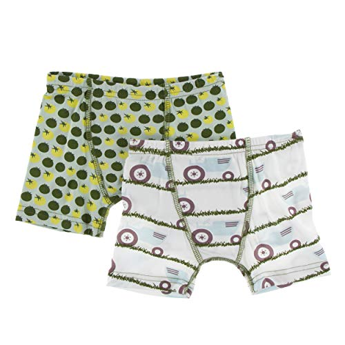 (Kickee Pants Little Boys Boxer Briefs Set - Natural Tractor and Grass & Aloe Tomatoes, Large)