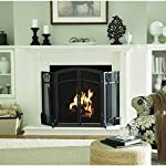 50.3-in Eggshell Black Powder Coated Steel 3-Panel Arched Twin Fireplace Screen + 4 Tools from Style Selections