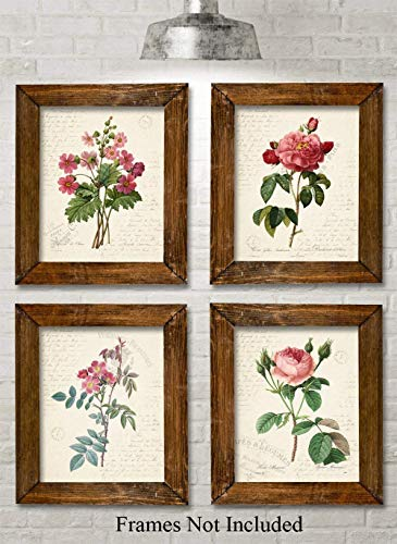 Paris Botanicals - Set of Four Photos (8x10) Unframed - Great for Bedroom/Bathroom Decor