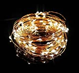 SEREN White Starry LED String Lights on Copper Wire with 5v Power Adapter, 33 Feet