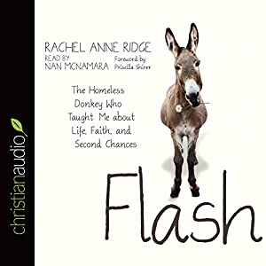 Flash Audiobook