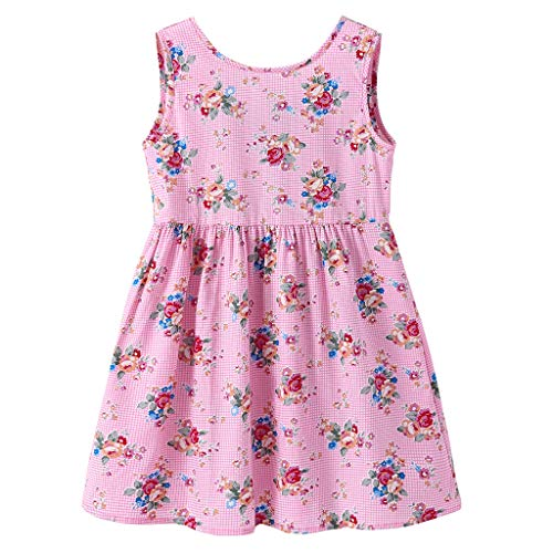 Toddler Baby Girl Dress Princess Floral Skirt Sveless Party Formal Dresses Girls Summer Clothes 1-7 Years Pink (Princess Door Hanger Craft)