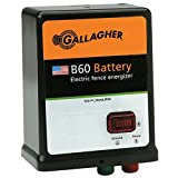 Gallagher G351504 B60 12-volt Fencer, 40 Acre/5-Mile