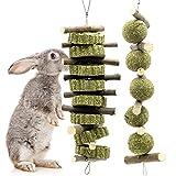 Bunny Chew Toys for Teeth, Molar Rabbit Toys