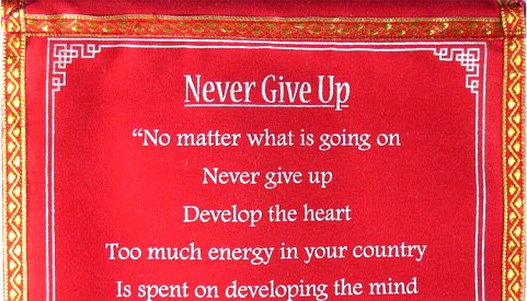 "DALAI LAMA WALL QUOTES ~ ""Never Give Up"" ~ Red Velvet ..."