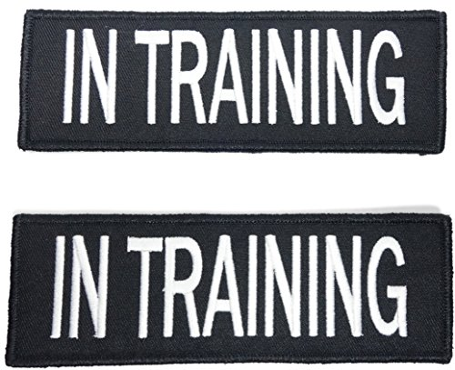 (Leashboss in Training Dog Patch for Vest - Embroidered 2 Pack - Hook and Loop Both Sides - 3 Sizes (in Training, 2 x 6 Inch))