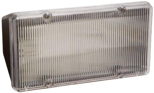 (RAB Lighting PLF13 CFL PLF Fluorescent Floodlight, 13W Twin Type, Polycarbonate, 13W Power, 900 Lumens, 208V, Bronze Color)