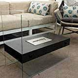 Cheap Chic Fireplaces Boston Liquid Bio-Ethanol Fireplace: Ventless, Modern and Freestanding Luxury Black – Tempered Glass and Stainless Steel Burner Insert; Safe, Portable, Elegant Art for Indoor / Outdoor