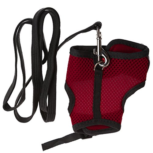 Redriver Mesh Harness Leash Ferret Guinea Pig Small Animal Pet Walk Lead (Red, S)
