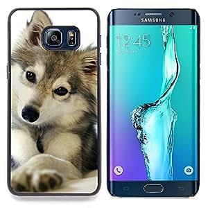 "For Samsung Galaxy S6 Edge Plus / S6 Edge+ G928 Case , Cute Puppy Lobo Invierno Nieve Mascota canina"" - Diseño Patrón Teléfono Caso Cubierta Case Bumper Duro Protección Case Cover Funda"