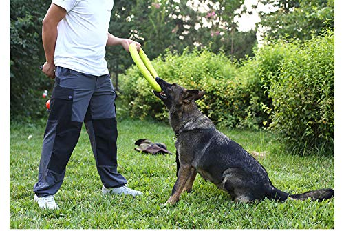 31cm Dog Agility Training Toys EVA Ring Dogs Puppy Chew Toys Teeth Cleaning Bite Resistant Interactive Dogs Toy Pet Supplies
