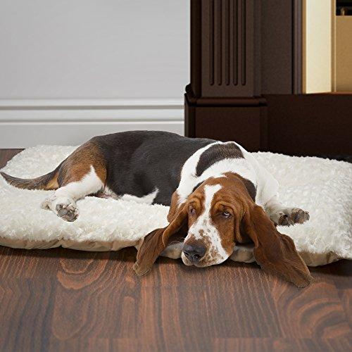 Buy petmaker medium cushion pillow pet bed latte