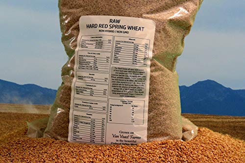 Hard Red Spring Wheat Chemical Free & Non-GMO Pre-Cleaned Grain 23 lbs (Wheat, 23 lbs)