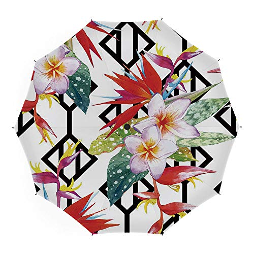 Umbrellas Compact Travel Umbrella Auto Open Close,Plant,Auto Open Close Umbrella 45 Inch,Beautiful Vibrant Colored Exotic Flowers on Absract Shapes Natural Way of Life Decorative (Umbrella Natural Colored Canopy)