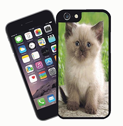 Cat phone case, design 017 - This cover will fit Apple model iPhone 7 (not 7 plus) - By Eclipse Gift Ideas