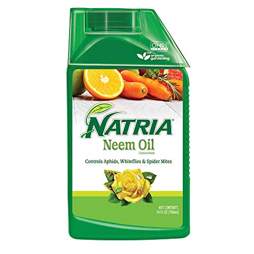 Natria 706240A Organic Plant Protection from Pests and Diseases Neem Oil Concentrate 24 Oz, 24-Ounce,