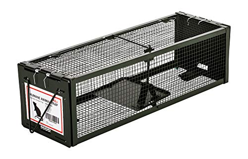 AB Traps Pro-Quality Live Animal Humane Trap Catch and Release Rats Mouse Mice Rodents Squirrels and Similar Sized Pests - Safe and Effective - Extended Length Dual Door