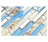 TST Glass Inner Conch Tile Beach Style Blue Cream White Brushed Steel Art Mosaic Kitchen Backsplash Bath Decor TSTNB06 (1 Sample [4'' x 12''])