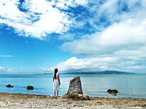 (Yaeyama Islands )